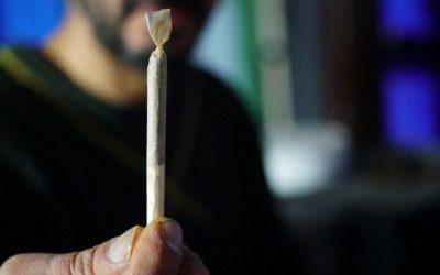 Tajniki palenia suszu CBD